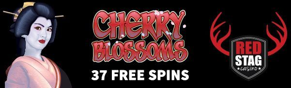 37 Free Spins